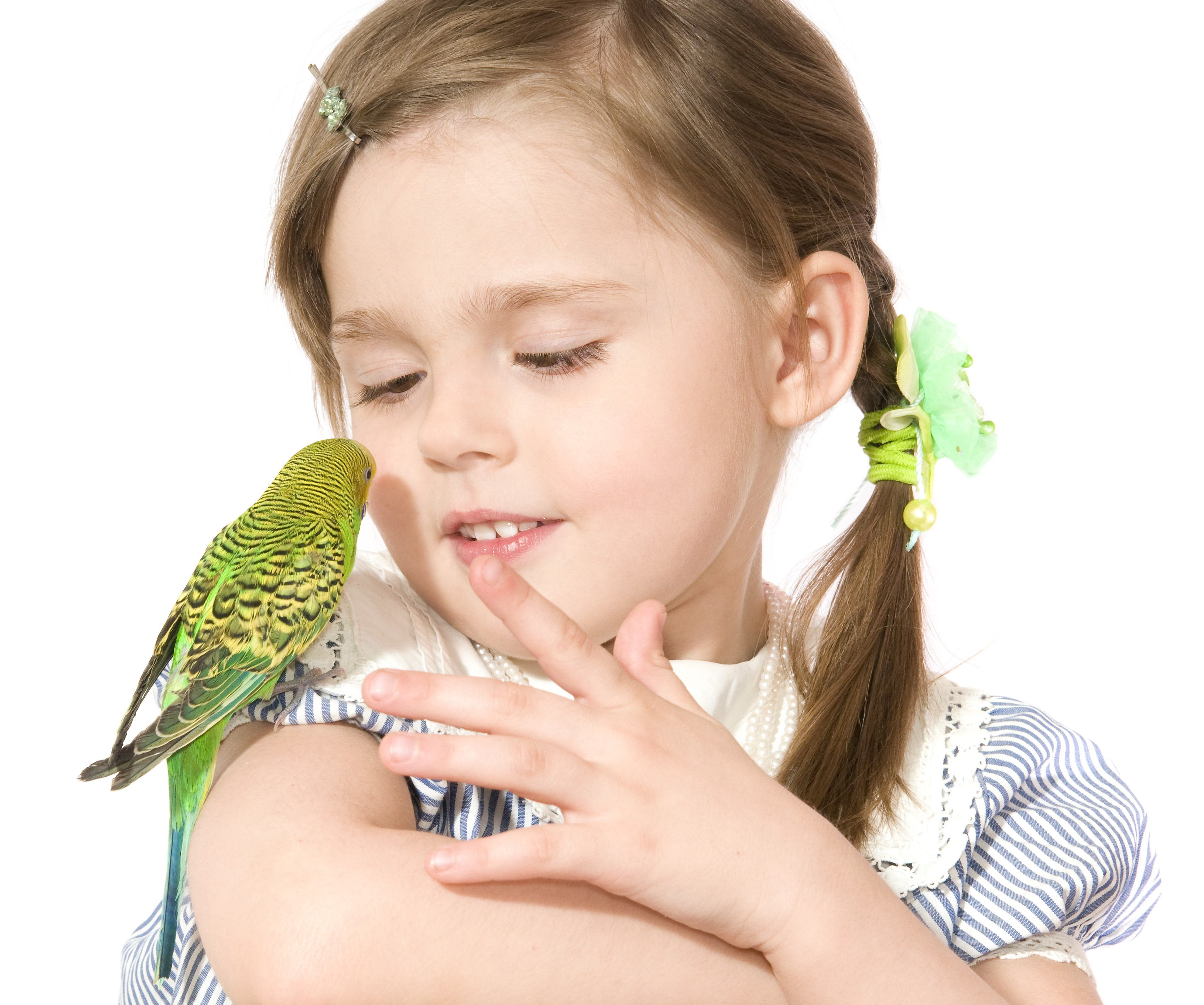 попугай на плече у ребенка