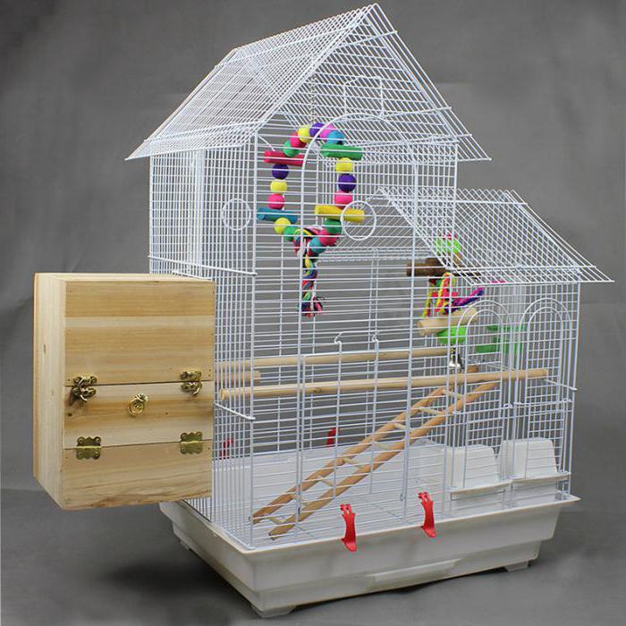 Вариант клетки для попугая