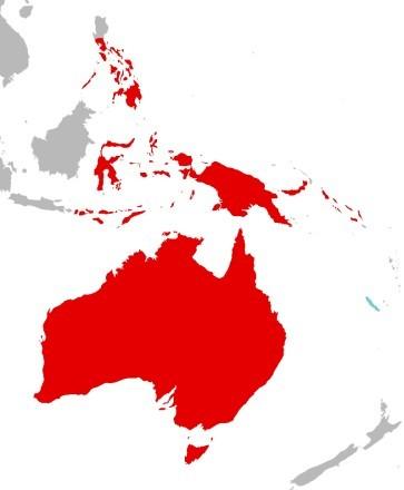 Где живут попугаи Какаду