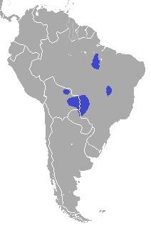 Где обитает гиацинтовый ара