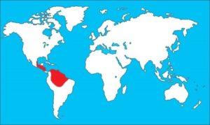 Где живут красные ара