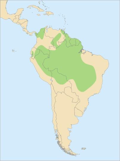 Ареал обитания желтых ара
