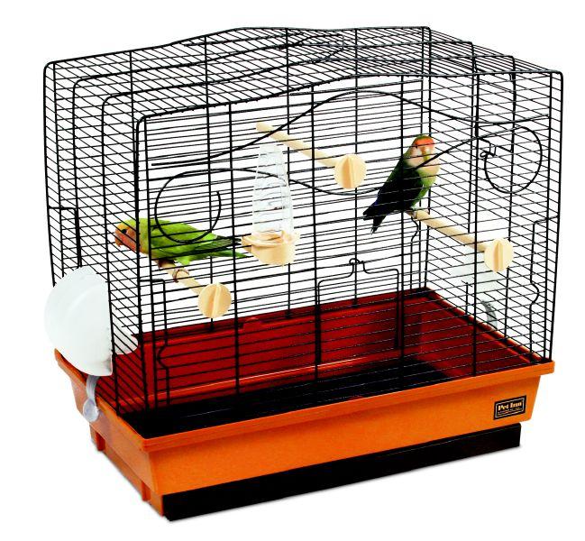 попугайчик клетка